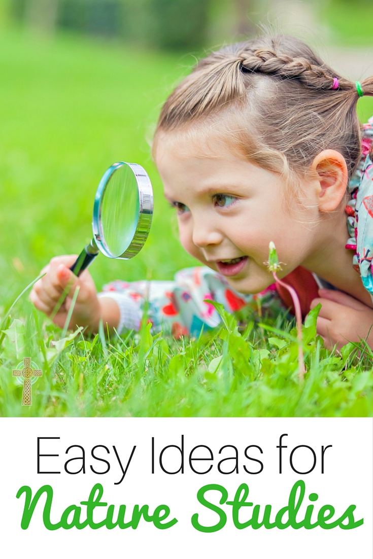 Tips for Nature Study with Toddlers and Preschoolers