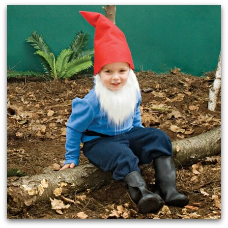 easy gnome costume
