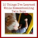 homeschooling twin boys