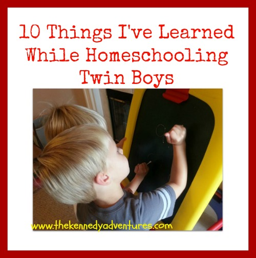 homeschooling twin boys