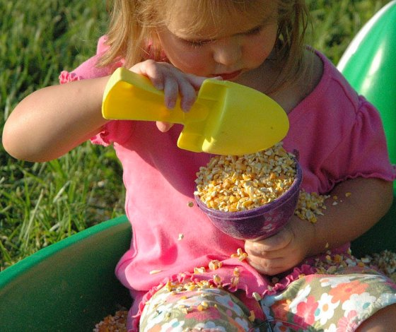 sensory play with corn #playfulpreschool