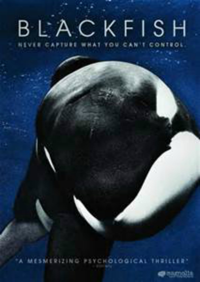 killer whale documentary
