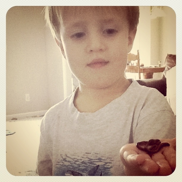boys with bugs