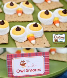 Owl Smores