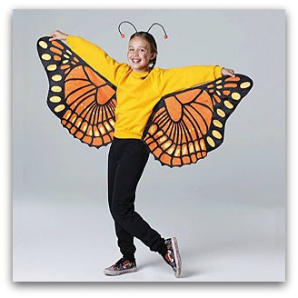 Diy halloween costumes for the whole family the kennedy adventures diy butterfly costume solutioingenieria Gallery