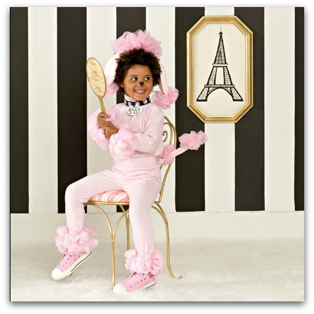 Easy poodle costume  sc 1 st  The Kennedy Adventures! & DIY Halloween costumes for the Whole Family - The Kennedy Adventures!