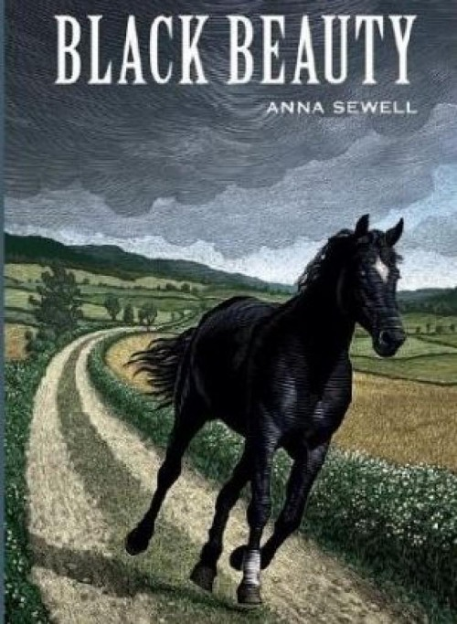 classic horse books for girls