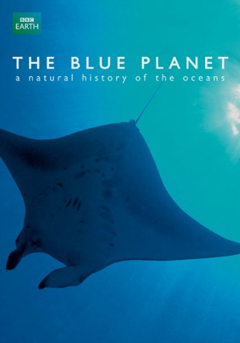 ocean movies on netflix