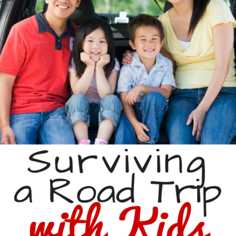 surviving a road trip with kids
