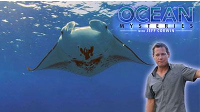homeschool ocean documentaries