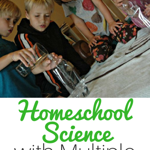 Homeschool moms, are you struggling with teaching homeschool science to multiple ages? These Homeschool Subscription kits from Insight to Learning are the perfect solution.