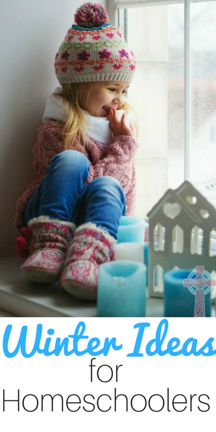 Need some fun ideas for winter learning in your homeschool? Grab a cup of hot chocolate and settle in with these ideas -- crafts, books to read aloud, activities, art and nature studies.
