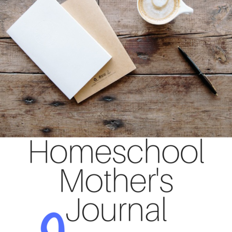 Share what you and your family are doing this month with the Homeschool Mother's Journal --- hosted monthly at iHomeschool Network.