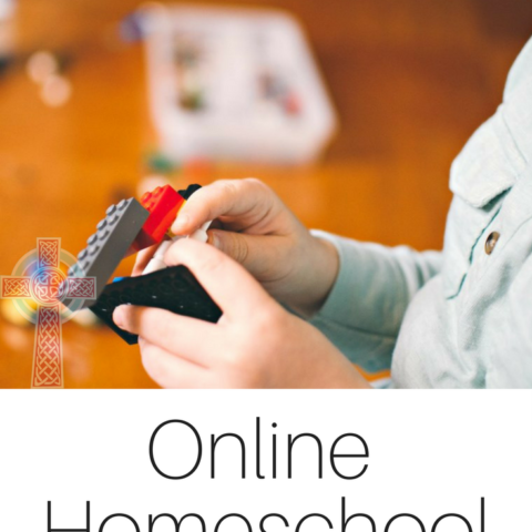 Looking for electives in your homeschool curriculum? These online options from Homeschool Buyers Co-op are a great choice for all ages.