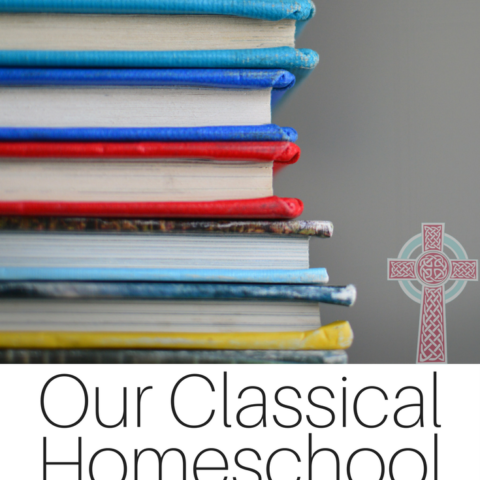 Looking for a classical Christian homeschool curriculum? We're heading into sixth grade -- come and take a look at our middle school choices.