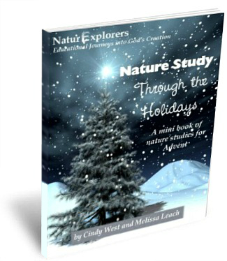 Don't forget about nature study in your Advent plans!