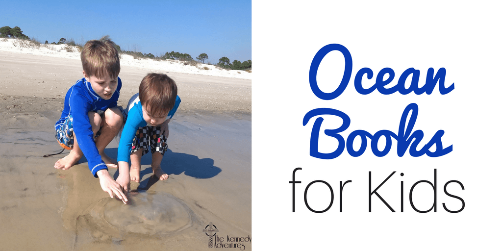 Looking for great ocean board books? We've got you covered! #oceanbooks