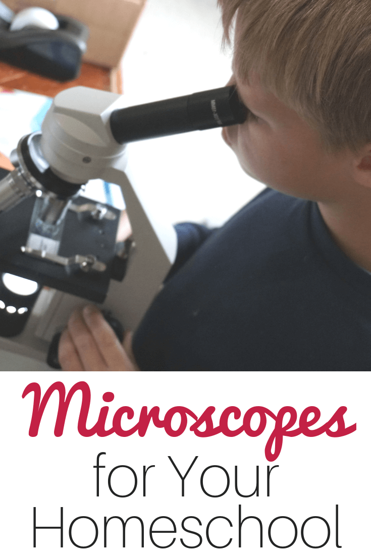 How to Choose a Microscope in Your Homeschool