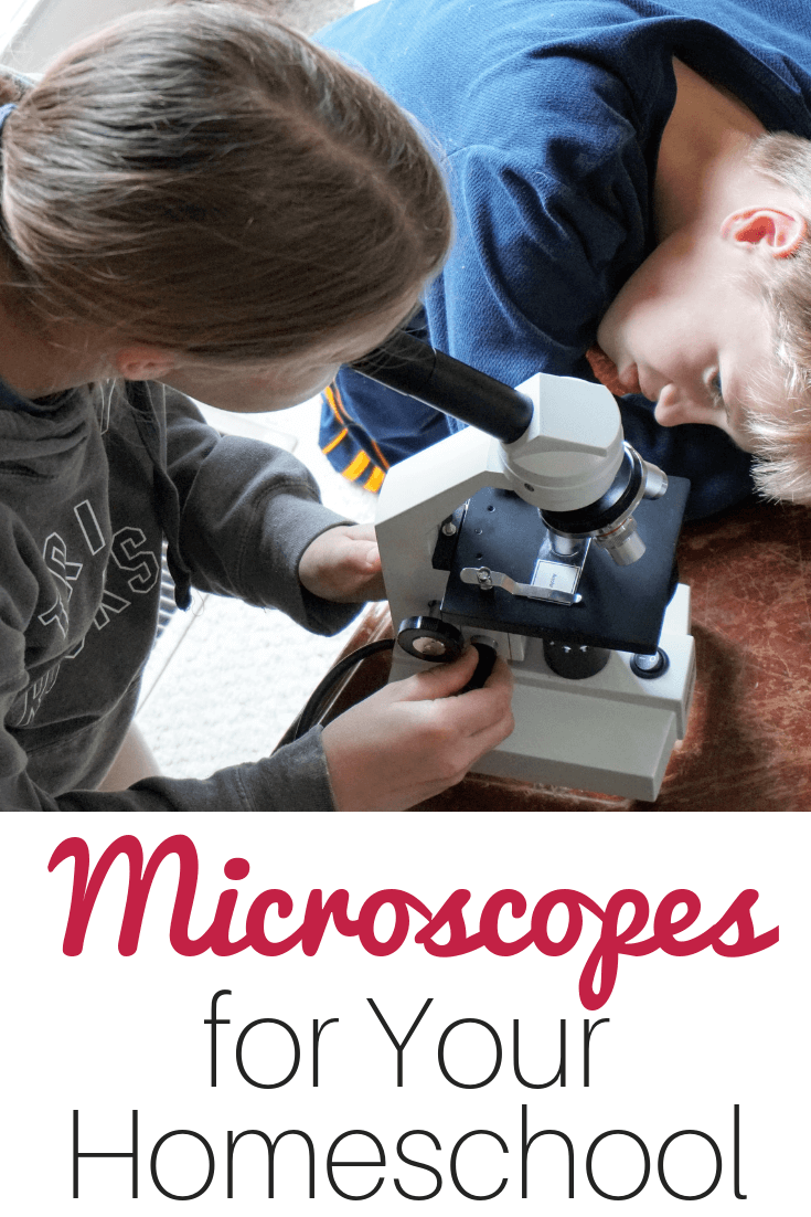 Tips for choosing the perfect microscope for your homeschooling family #homeschoolscience #homeschool