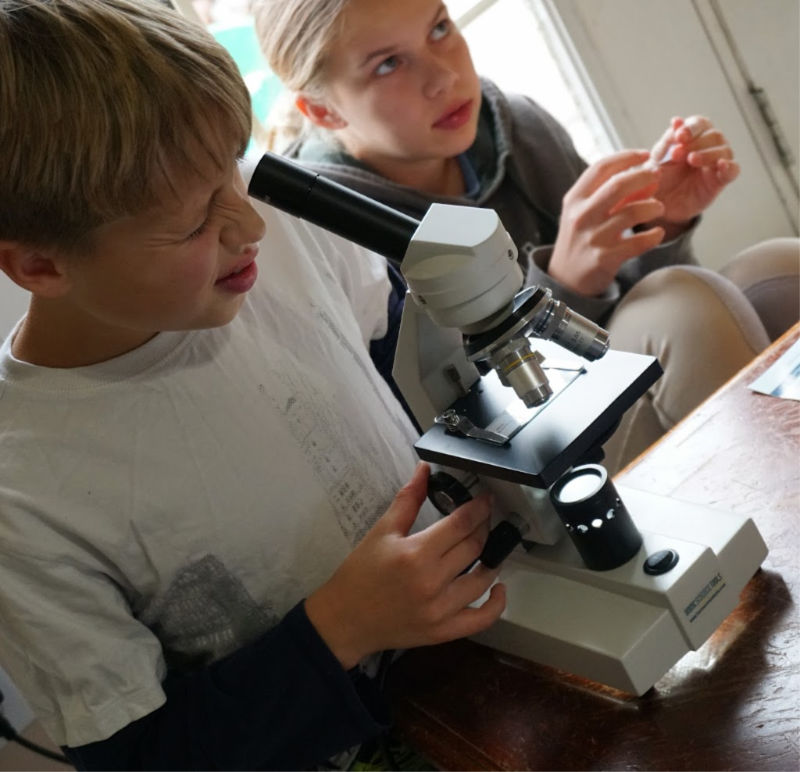 Looking for the best homeschool microscope for your big family? We've got you covered.