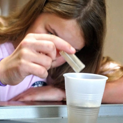 Learn about microscopic animals with this protozoa culture kit. #homeschoolscience #homeschool