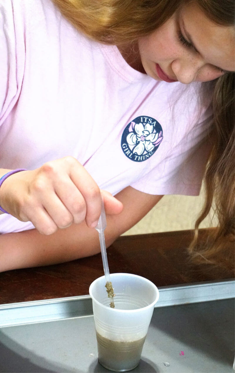 The perfect project for a big family -- protozoa cultures! #homeschoolscience #homeschool