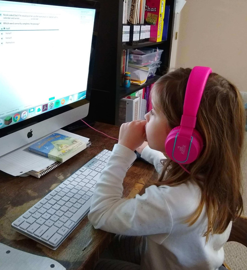 Does your elementary homeschool student need standardized testing this year? Check out these ideas and tips.